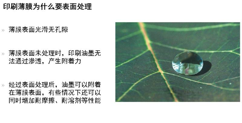 印刷薄膜1